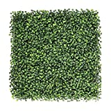 Material: Material- PVC plastic; Color: Green, Color: Green-Set-of-2 Package Contents: 1 Artificial Eucalyptus Boxwood Mat Item Size: 50 cm x 50 cm x 2 cm It is made up of quality velvet fabric and thus give it a real velvet touch; It is made up of q...