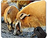 Nettes Schwein fertigte Entwurfs-ausgedehnte Spiel-Mausunterlagen, Afrika-neues Jahr der Schwein-Spiel-Mausunterlage besonders an.