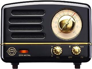 Muzen M-OTR Metal Black Portable Wireless FM Radio and Bluetooth Speaker, Jet Black