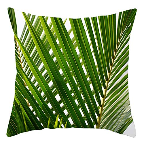 KnBoB Funda Almohada 40 x 40 cm Verde Poliéster Hojas de Coco Estilo 29
