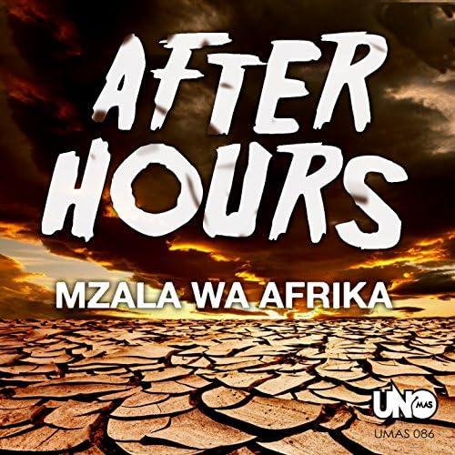 Mzala Wa Afrika