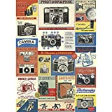Cavallini & Co. Vintage Camera Decorative Decoupage Poster Wrapping Paper Sheet