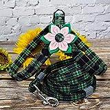 El perro del arnés del perro de perrito del correo del arnés correos fijados los accesorios del perro de la tela escocesa for mascotas Chihuahua chaleco del arnés a pie de plomo for Pequeña Mediana Pe
