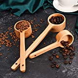 3 Sizes Wooden Spoon Long Handle Coffee Scoop Tea Espresso Measure Spoon for Ground Beans Tea Condiments Salt Seasoning Oil Sugar Spice, Home Kitchen Supplies