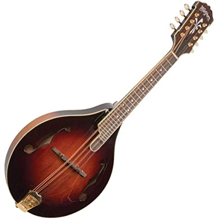 Timeless A5 Mandolin with Case