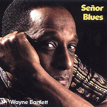 Señor Blues (feat. Thomas Hufschmidt, Jens Foltynovicz, Drik Schilgen, Wolfgang Engstfeld)