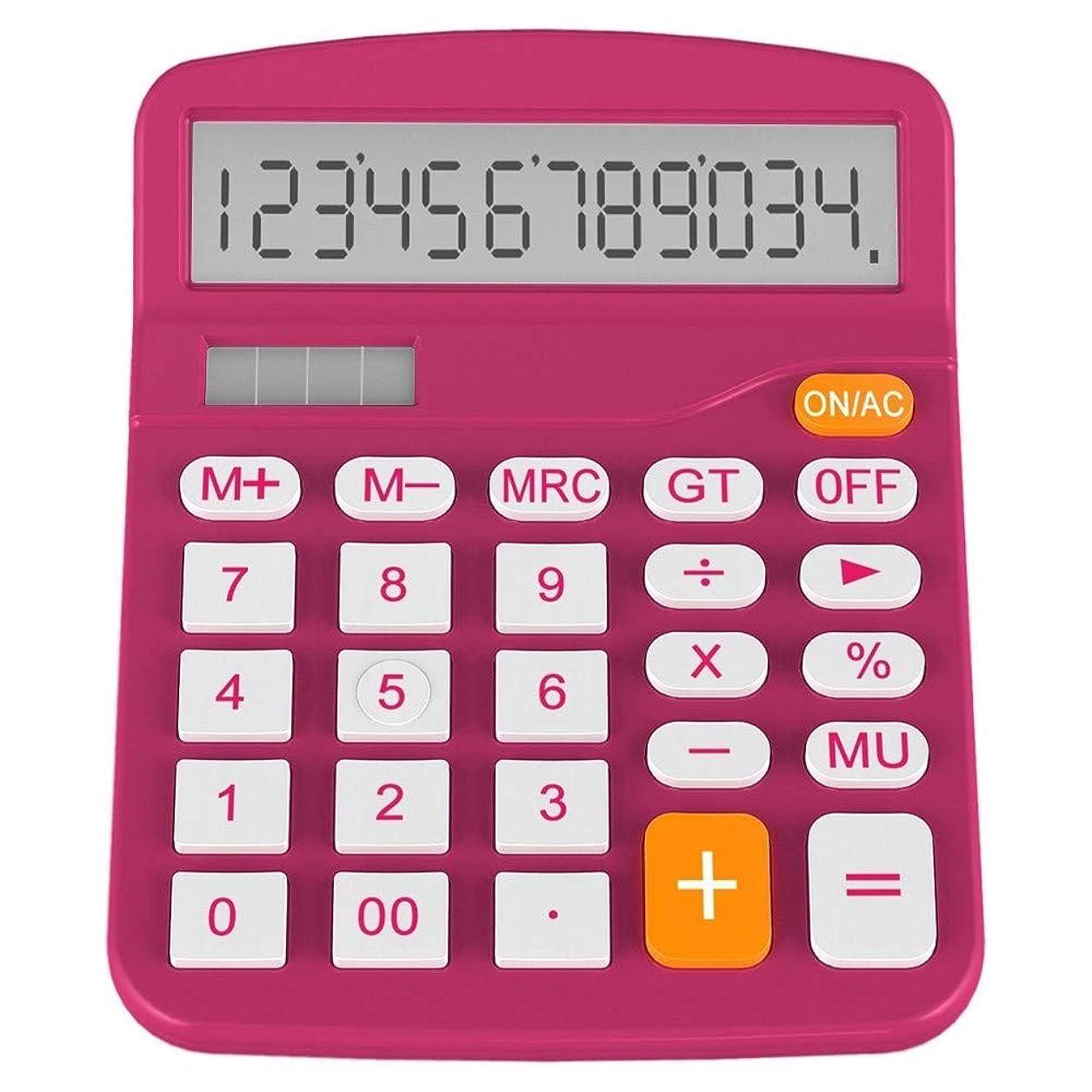 団結する災難才能のあるPlum 卓上電卓 ベーシック オフィス ビジネス 家庭 スタンダード ソーラー 大きなディスプレイ
