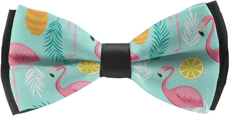 Men'S Pre-Tied Bow Tie Neck Tie Classic Cravat for Wedding Party