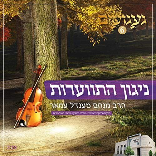 Rabbi Menachem Amar - הרב מנחם עמאר