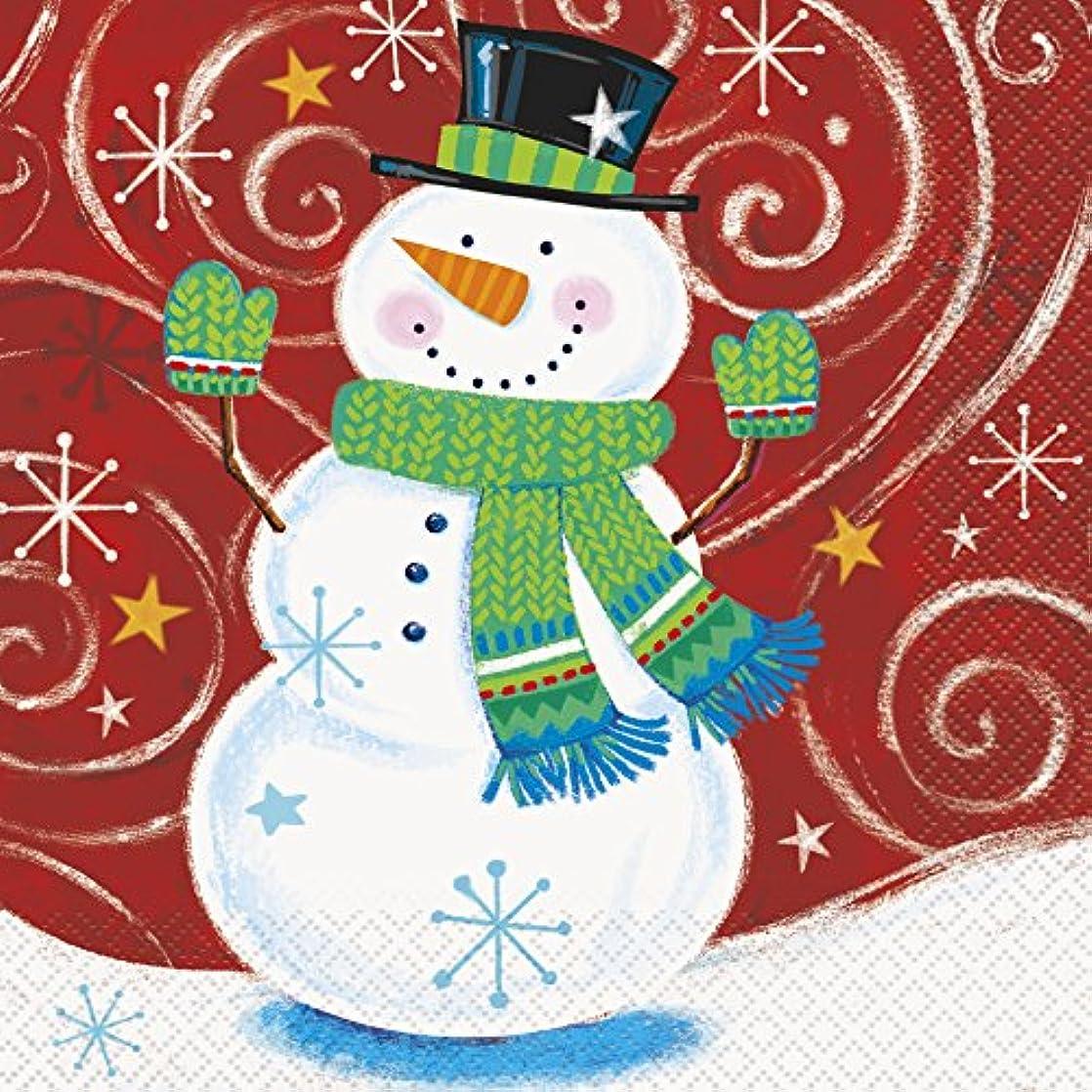 Snowman Swirl Holiday Party Napkins, 16ct ebdbovmv14241