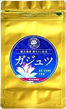 ガジュツ粉末100g (屋久島産紫ウコン100%)