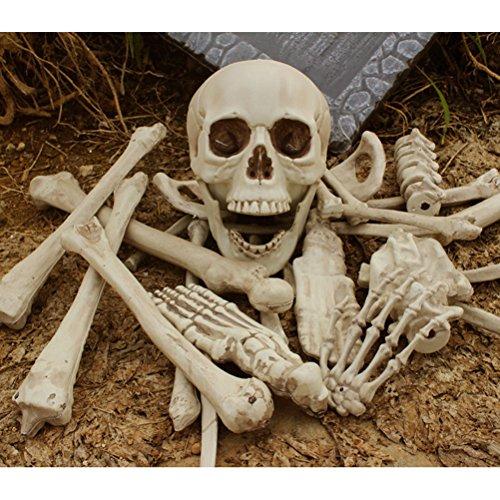Tinksky 27 bolsas de 5,4 kg de huesos Bucky esqueleto humano de Halloween Prop de plástico