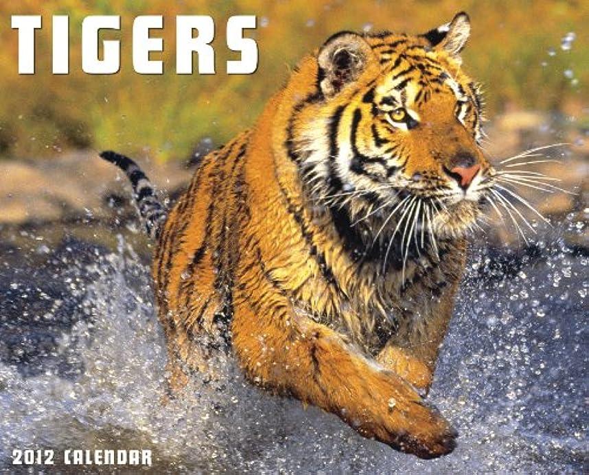 商人メニュー確実Tigers 2012 Calendar
