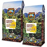 Java Planet, Organic Coffee Beans, Sumatra Indonesia Single Origin, Gourmet Dark Roast of Arabica Whole Bean Coffee, Certified Organic, Grown at High Altitudes, Two 1LB Bags