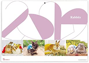 365カレンダー 2020年 ウサギ カレンダー 壁掛け 卓上付き 2020-001
