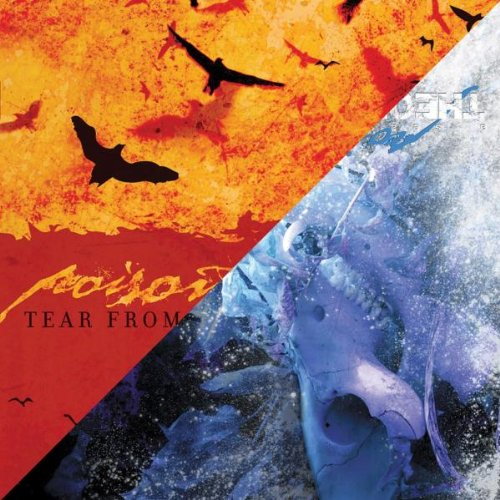 Poison The Well - The Opposite Of December / Tear From The Red - 2xLP