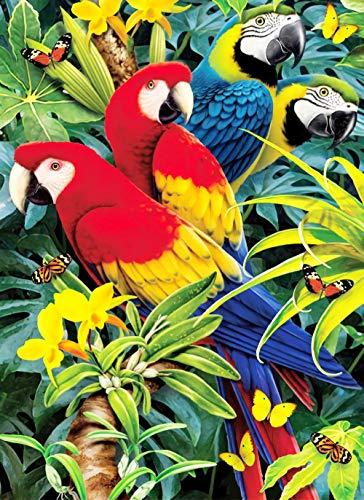 Diamant-schilderij 5D knutselen volledige diamanten rond diamant papegaai vogel 30 x 40 cm borduurwerk strass schilderij kruissteekset wand kunst decoratie