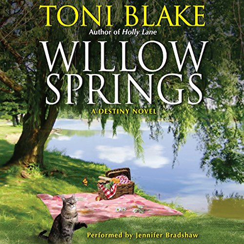 Willow Springs audiobook cover art