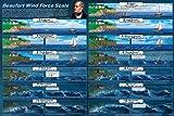 ビューフォート風力階級教育科学教室チャートポスター24x 36 24x36 Laminated Print XXX-E108F-LAM