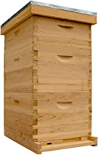 Bee Hive Complete with Frames & Wax Coated Foundations (NU8-2D1M)