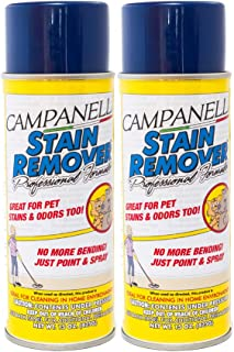 Campanelli's Professional Formula Stain Remover - Pet Stain and Odor Eliminator for Dogs and Cats - Removes Stains from Ca...
