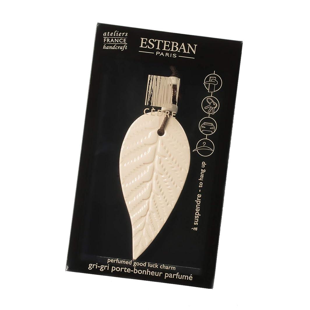 に対応する変装した明らかにするエステバン(ESTEBAN) エステバン セダー ラッキーチャーム 1個