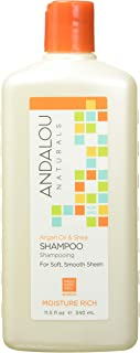 Andalou Naturals Argan Oil & Shea Moisture Rich Shampoo,Orange, 11.5 Ounce