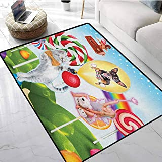Kids Area Rug 5x7 ft Colorful Fantasy Land Rainbow Candy Trees Cat Dog Fairy Girl Boy Flying in Suitcase Print Home Decor Foor Carpet