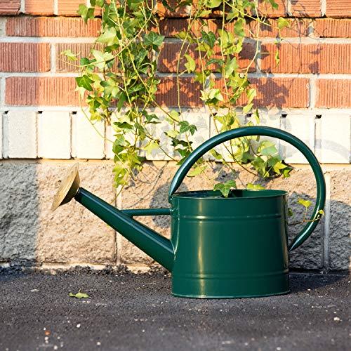 HORTICAN Verzinkte Gießkanne Zimmerpflanzen Gießkanne Moderner Stil Pflanze Wasserkanne mit Griff und Rosenkopf für Zimmerpflanzen im Außen und Innenbereich (5 Liter)