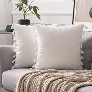 MIULEE Pack of 2 Velvet Soft Solid Decorative Throw Pillow Cover with Tassels Fringe Boho Accent Cushion Case for Couch Sofa Bed 20 x 20 Inch Pure White
