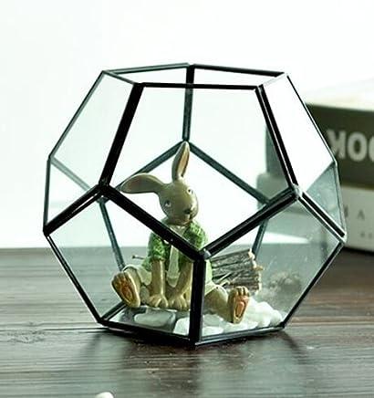 Ultra Diamant 17x17x13cm Clear Glass Terrarium Planters Geometrische Form F/ür die Verlauten Einzigartig Herzst/ück Oder Windows-Shacken f/ür Luftanlagen Fern Moss Sukkulenten im Garten