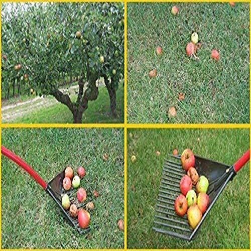 Root Assassin Garden Rake