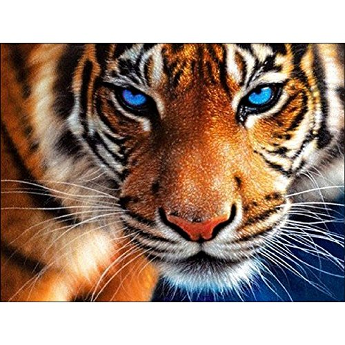 DIY 5D Diamond Painting by Number Kits, Full Drill Crystal Rhinestone Embroidery Pictures Arts Craft for Home Wall Decor Gift Aggressive Tiger 11.8x13.8Inch
