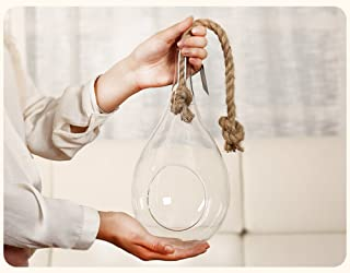Cuerda para colgar en forma de lágrima, terrario grande, ideal para plantas de aire, suculentas y cactus, decoración interior, vidrio, transparente, grande