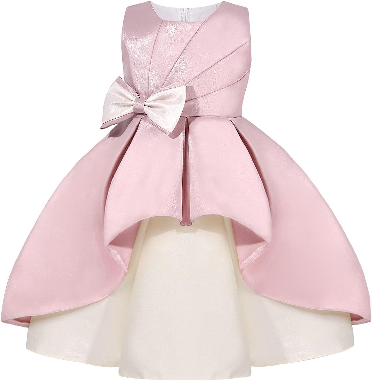 CHICTRY Kids Girls Sleeveless Pleated Fancy Flower Dress Wedding Pageant Birthday Princess Gown