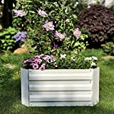 Z-DYQ Raised Garden Bed Outdoor Raised Garden Bed, Durable Metal Garden Planter, Easy to Setup Growing Bed Kit, Open Bottom, for Flowers,Herbs and Vegetables, 60x60x30cm,White (Size : White)