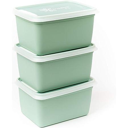 Amuse Plus Boites à congélation et conservation alimentaire, Bio Plastique (Canne à Sucre), Vert, 1000 ml