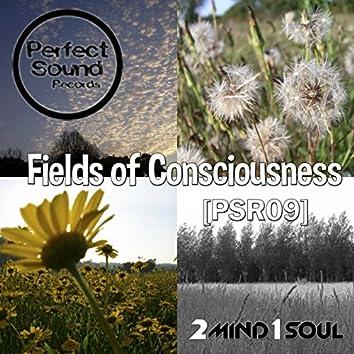 Fields of Consciousness