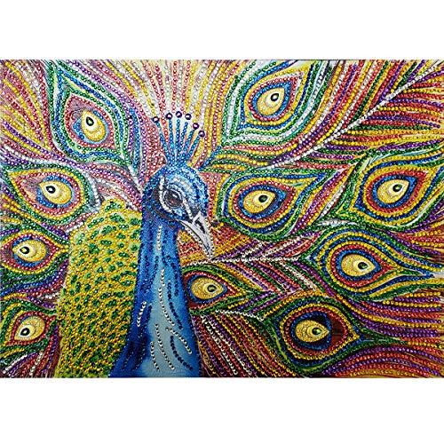 MXJSUA 5D Kit de Pintura de Diamante de Forma Especial por número de Taladro de Cristal DIY Arte artesanía decoración de la Pared del hogar 30x40cm Pavo Real