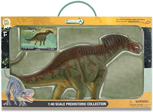 estilo clásico CollectA Amargasaurus Toy in in in Window Box by CollectA  entrega rápida