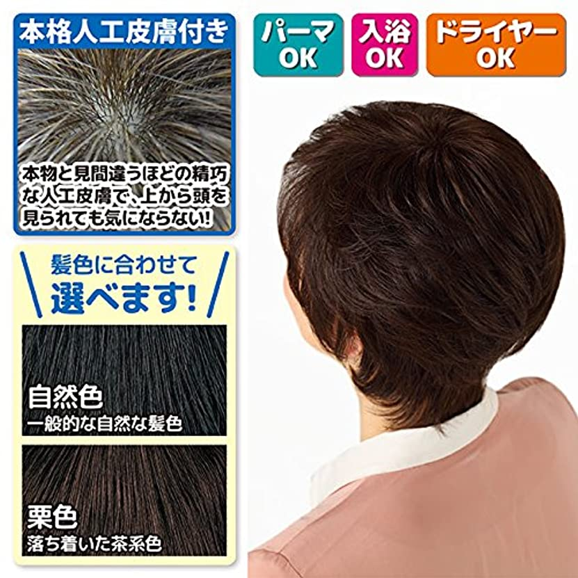 主流フォーラム賢い本格人工皮膚付き つむじ用?部分かつら (人毛100%) カラー:栗色