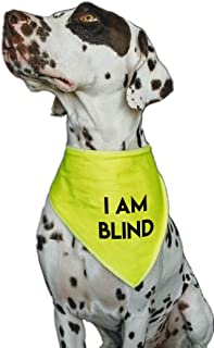 For Dog Walks To Alert To Training /& Behavior Issues Alert Warning Dog Bandana XL Large Dog Husky, GSD, Newfies /& Chow Spoilt Rotten Pets S4 IM A RESCUE HI VIZ