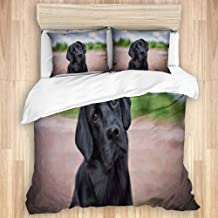 BGNHG Decorative Duvet Cover Sets Bed Sheets,Adorable Drawing Dogs Labrador Cool Black Animals Dog Retriever Wildlife Funky Messy Lab Gentleman,3 Piece Bedding Set with 2 Pillow Cases King Size