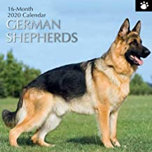 2020 German Shepherds Wall Calendar, 12 x 24 Inch Monthly View, 16-Month, Dogs and Pets Theme