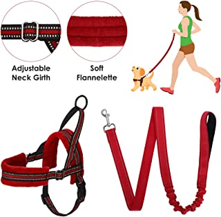Best puppy harness and lead Reviews