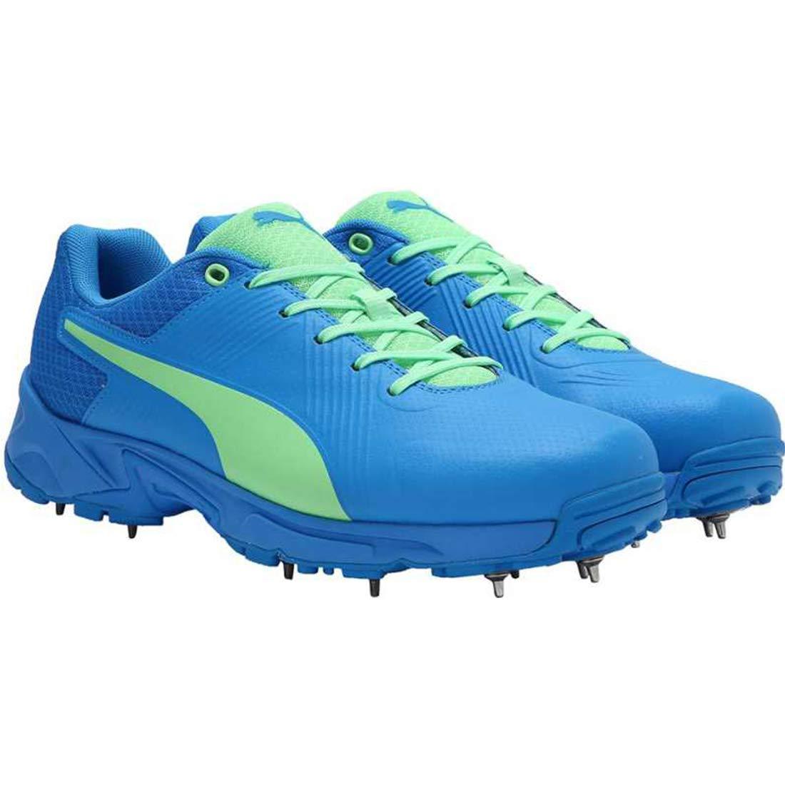 Buy Puma Men's Spike 19.2 Cricket Shoe