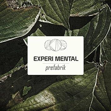 Experi Mental