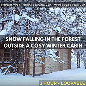 Snow Falling in the Forest Outside a Cozy Winter Cabin: One Hour (Loopable)