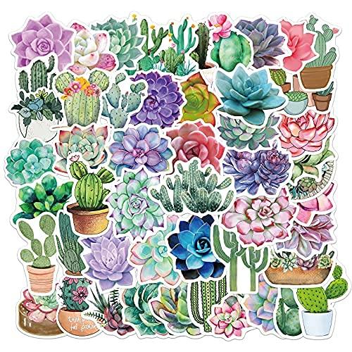 XXCKA 50 Uds Dibujos Animados suculentos Cactus Planta Graffiti Pegatina Equipaje Trolley Caso Cuaderno Impermeable DIY decoración