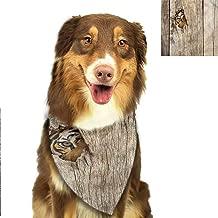 tiger eye bow tie